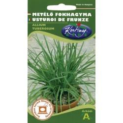 Seminte usturoi de frunze - KM - Allium tuberosum
