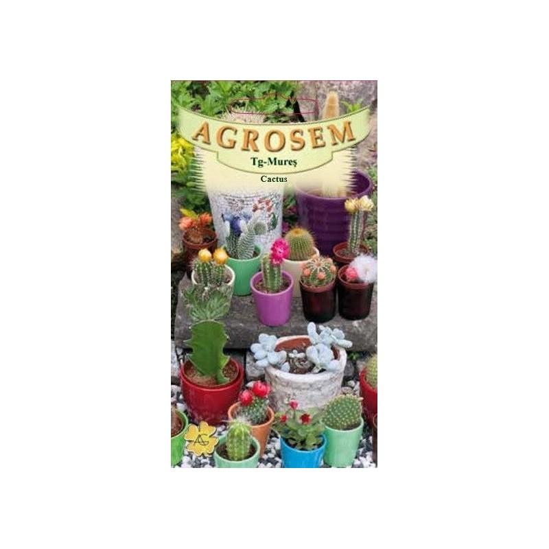 Cactus seminte - AS - Cactus specie mix