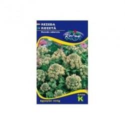 Seminte rozeta - KM - Reseda odorata
