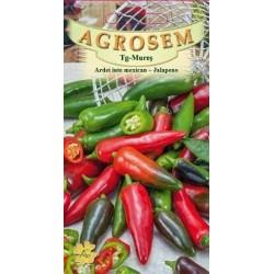 Ardei iute mexican Jalapeno seminte - Capsicum annuum