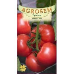 Tomate roz seminte - AS - Lycopersicon esculentum