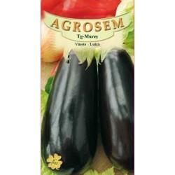 Vinete Luiza seminte - AS - Solanum melongena
