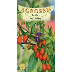 Goji Berry seminte - Lycium barbarum