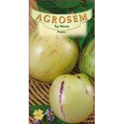 Pepino seminte - AS - Solanum muricatum