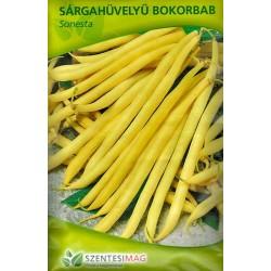 Fasole galbena pitica timpurie Sonesta 40 g seminte - Szentesi - Phaseolus vulgaris L. convar. nanus