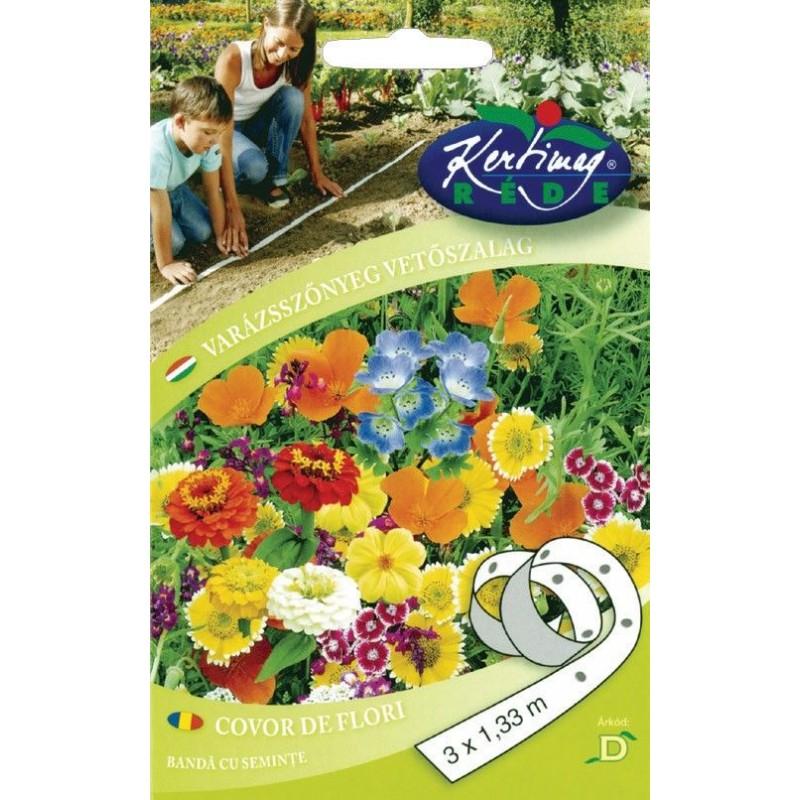 Seminte covor de flori pe banda - KM - 3 x 1,33 m