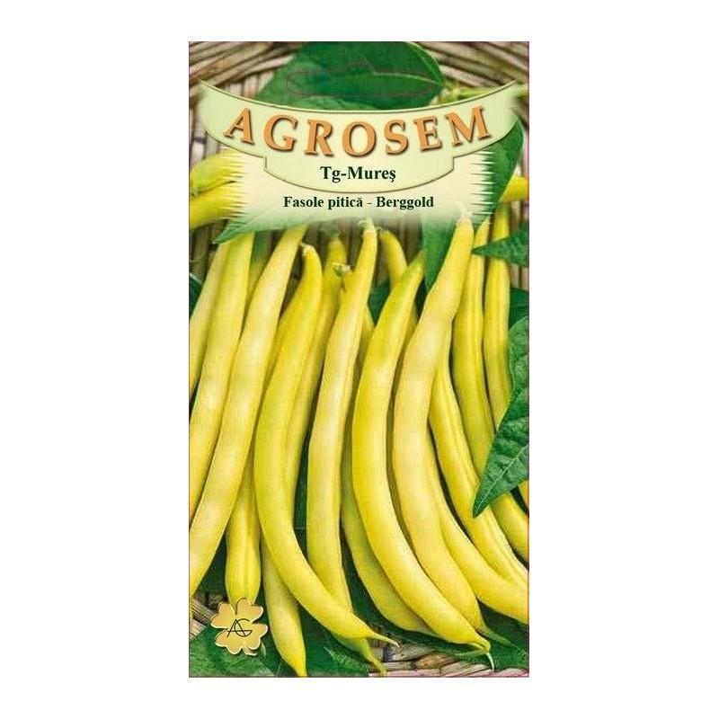 Fasole pitica seminte - Berggold