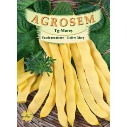 Fasole urcatoare galbena Golden Mary seminte BigPack - AS - 50g