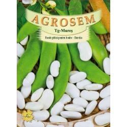 Fasole pitica pentru boabe Eureka seminte - AS - 1 kg