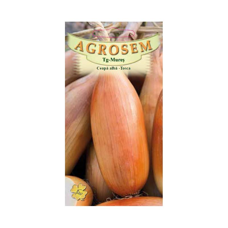 Seminte de Ceapa alba Tosca - AS - Allium cepa