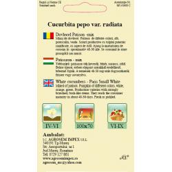 Seminte de Dovlecel mix - AS - Cucurbita pepo var. radiata