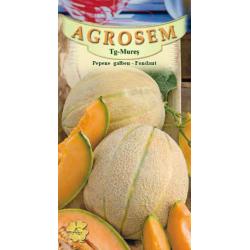 Seminte de Pepene galben Fondant - AS - Cucumis melo