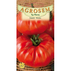 Seminte de Tomate Brutus - AS - Lycopersicon esculentum