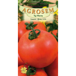 Seminte de Tomate Heinz 1350 - AS - Lycopersicon esculentum
