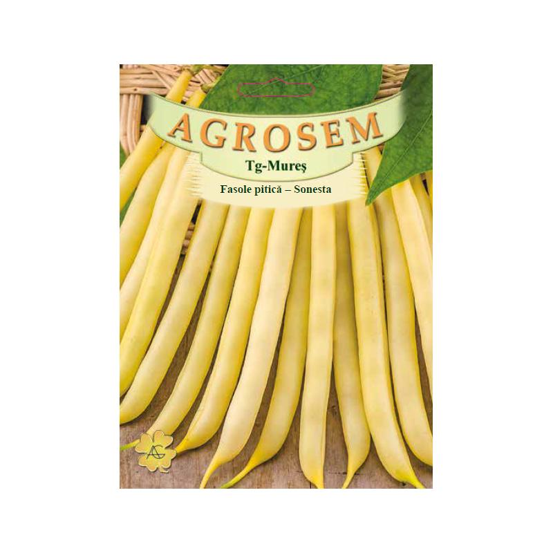 Seminte de Fasole pitica galbena Sonesta 50g - BigPack - AS - Phaseolus vulgaris var. nanus