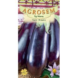 Seminte de Vinete Dragaica - AS - Solanum melongena