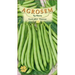 Seminte de Fasole pitica Processor - 500g - AS - Phaseolus vulgaris var. nanus