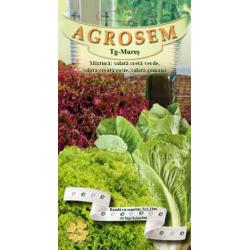 Seminte de Mixtura salata creata verde, creata rosie si salata romana: pe banda cu ingrasamant - AS