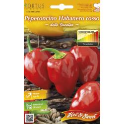 Seminte de Ardei iute Habanero Rosso - HT - Capsicum chinense