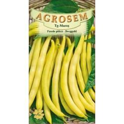 Seminte de Fasole pitica Berggold - 25 kg - AS - Phaseolus vulgaris var. nanus
