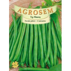 Seminte de Fasole pitica Contender - 25 kg - AS - Phaseolus vulgaris var. nanus