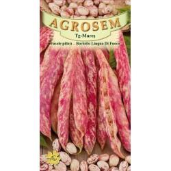Seminte de Fasole boabe Borlotto Lingua di Fuoco - 25 kg - AS - Phaseolus vulgaris var. nanus