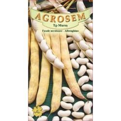 Seminte de Fasole urcatoare Albenghino 25 kg - AS - Phaseolus vulgaris