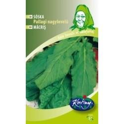 Seminte de Macris Pallagi - KM - Rumex acetosa