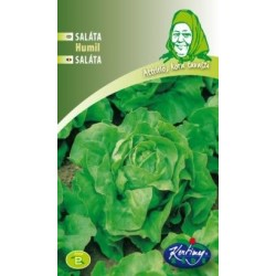 Seminte de Salata Humil - KM - Lactuca sativa