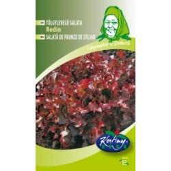 Seminte de Salata Redin - KM - Lactuca sativa