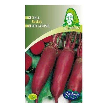 Seminte de Sfecla rosie Rocket - GB - Beta vulgaris