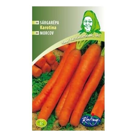 Seminte de Morcov Karotina - KM - Daucus carota