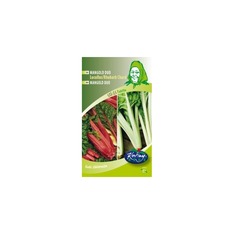 Seminte de Mangold verde-rosu - KM - Beta vulgaris