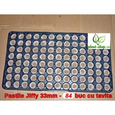 Pastile Jiffy 33mm - 84 buc cu tavita CADOU