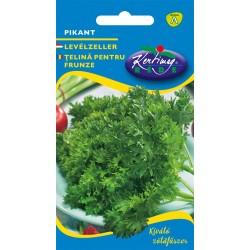Seminte de Telina pentru frunze Pikant - KM - Apium graveolens convar. dulce