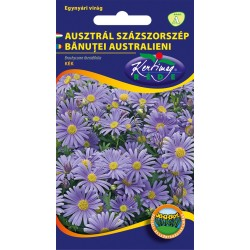 Seminte de Banutei australieni - KM - Brachycome iberidifolia