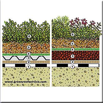 Acoperisuri verzi de plante