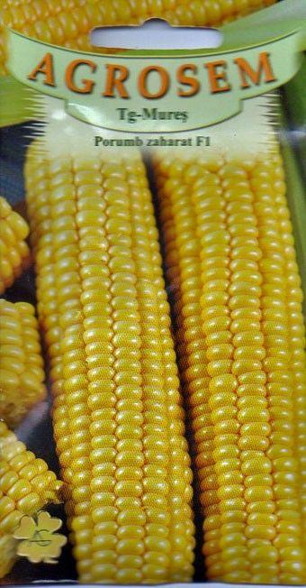 Seminte de Porumb zaharat Royalty F1 10 g - AS - Zea mays convar. sacharata - lichidare