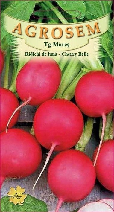 Seminte de Ridichi de luna Cherry Belle 200 g - AS - Raphanus sativus var. sativus