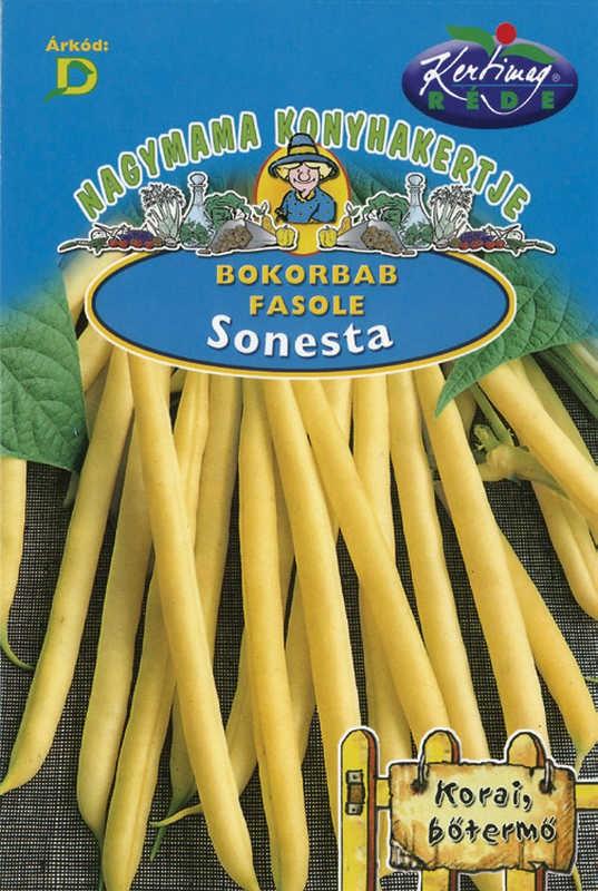 Seminte de fasole pitica Sonesta - 50 g - KM - Phaseolus vulgaris