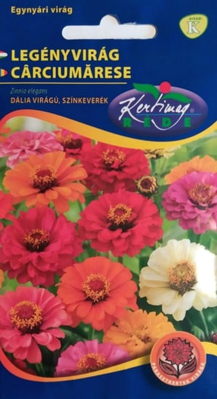 Seminte de Carciumarese cu flori Dalia mix - KM - Zinnia elegans