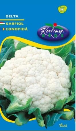 Seminte de Conopida semitardiv Delta - KM - Brassica cretica convar botrytis