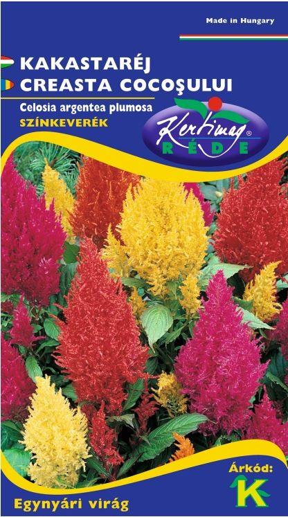 Seminte de Creasta cocosului mix - KM - Celosia argentea plumosa
