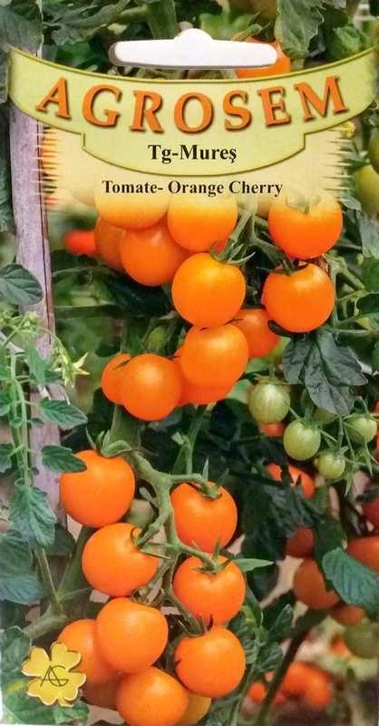 Seminte de Tomate Orange Cherry - AS - Lycopersicon esculentum