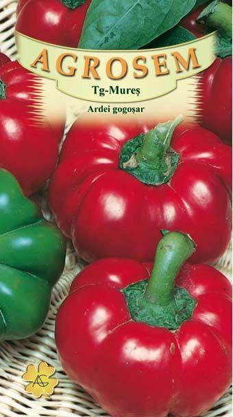 Seminte de Ardei gogosar Topepo Rosso - AS - Capsicum annuum
