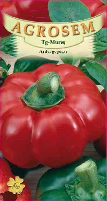 Seminte de Ardei gogosari Cornel - AS - Capsicum annuum