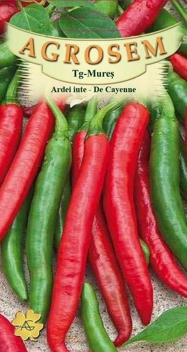 Seminte de Ardei iute De Cayenne - AS - Capsicum annuum
