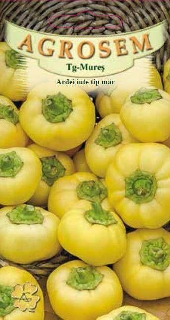 Seminte de Ardei iute tip mar Roundel - AS - Capsicum annuum