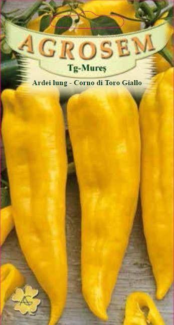 Seminte de Ardei lung Corno di Toro Giallo - AS -  Capsicum annuum