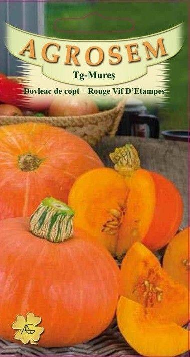 Seminte de Dovleac de copt Rouge vif D'Etampes - AS - Cucurbita maxima